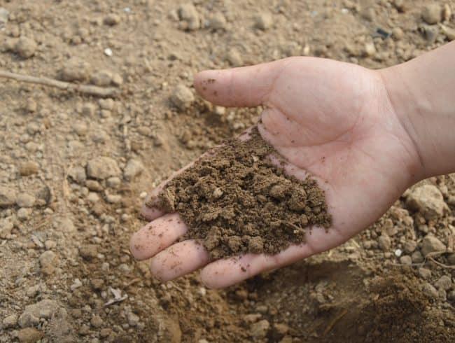 Dlaczego warto wykonać badania gruntu?